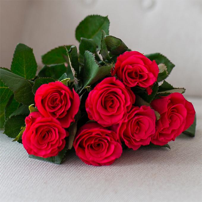 Роза (ярко-розовый, 40 см) — 7 шт., Розовая лента — 1 шт.