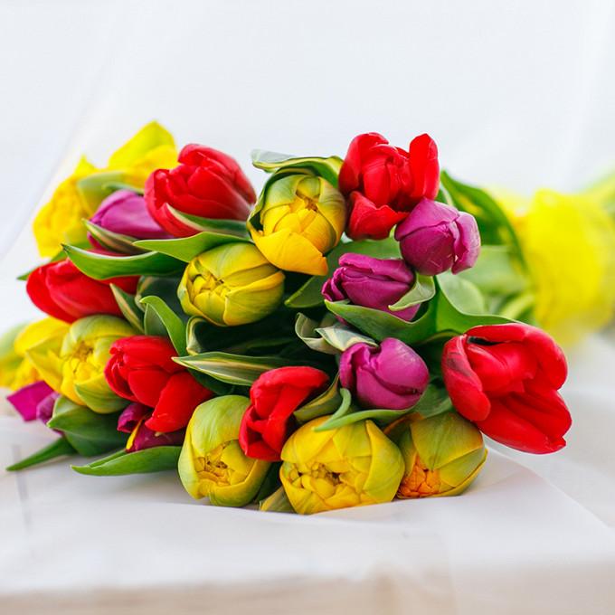Тюльпан (фиолетовый) — 6 шт., Тюльпан (красный) — 7 шт., Желтая лента — 1 шт., Тюльпан (желтый) — 10 шт.