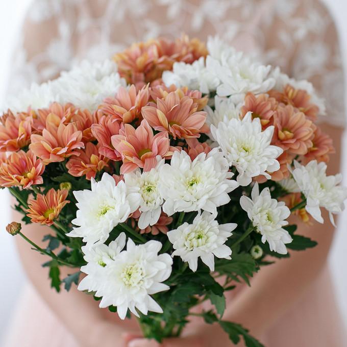 Хризантема кустовая (белый) — 5 шт., Хризантема кустовая (коралловый) — 4 шт., Розовая лента — 1 шт.