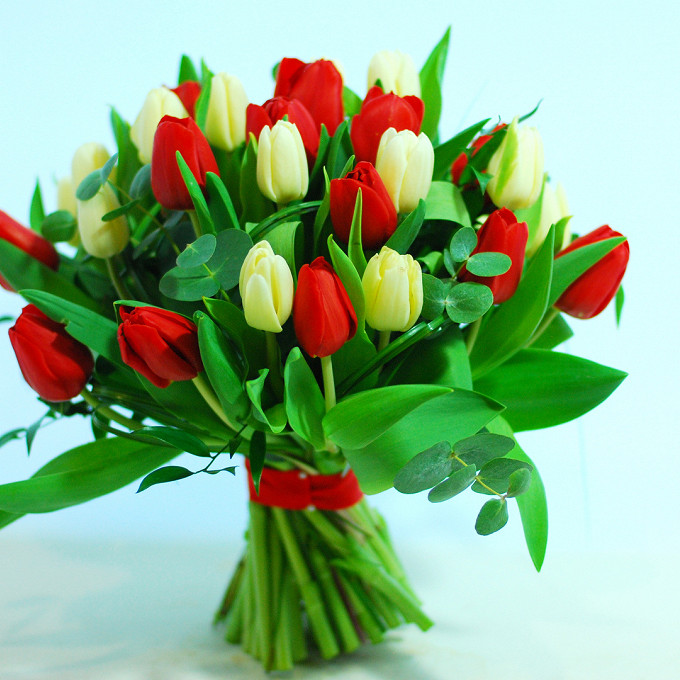 Тюльпан (красный) — 15 шт., Тюльпан (белый) — 16 шт., Эвкалипт — 1 шт., Лента атласная — 1 шт.