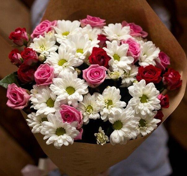 Роза кустовая (нежно-розовый) — 9 шт., Хризантема кустовая (белый) — 5 шт., Розовая лента — 1 шт., Упаковка Крафт-бумага — 1 шт.