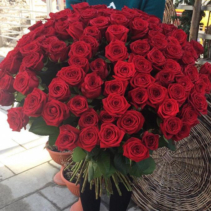 Роза Кения (красный, 60 см) — 101 шт., Лента атласная — 2 шт.