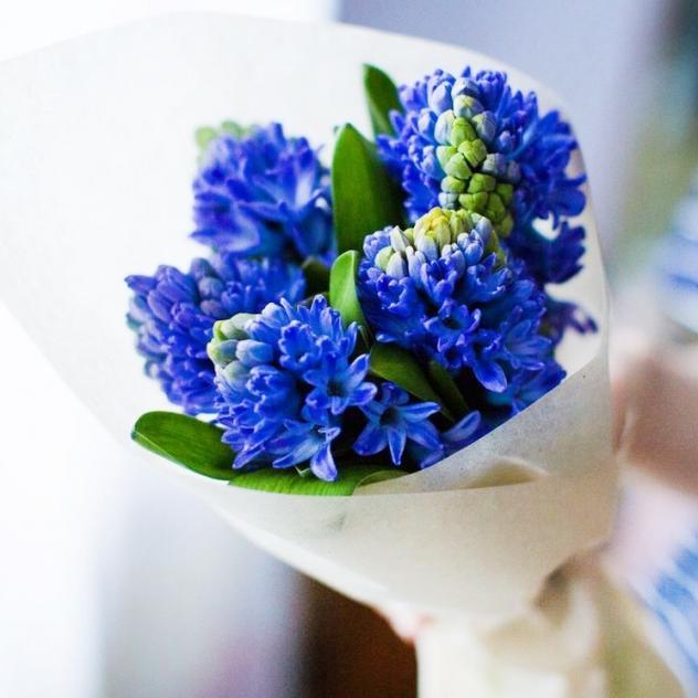 Гиацинт (синий) — 5 шт., Упаковка Фетр — 1 шт., Розовая лента — 2 шт.