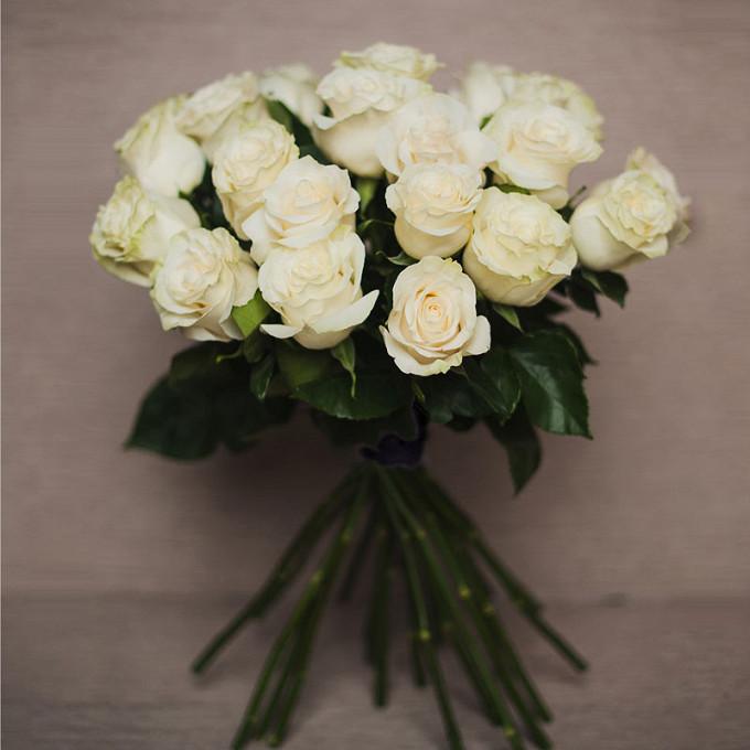 Роза Эквадор (белый, 70 см) — 25 шт., Лента атласная — 1 шт.