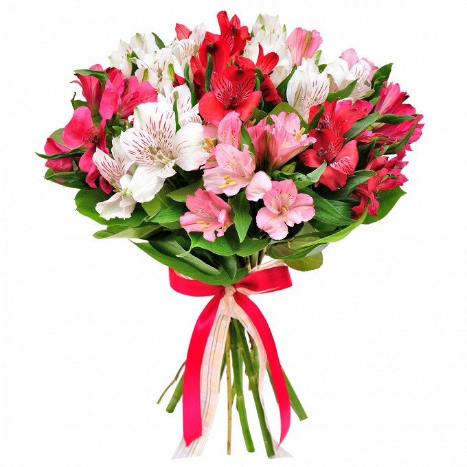 Альстромерия (микс (разных цветов)) — 9 шт., Салал — 3 шт., Лента атласная — 2 шт.