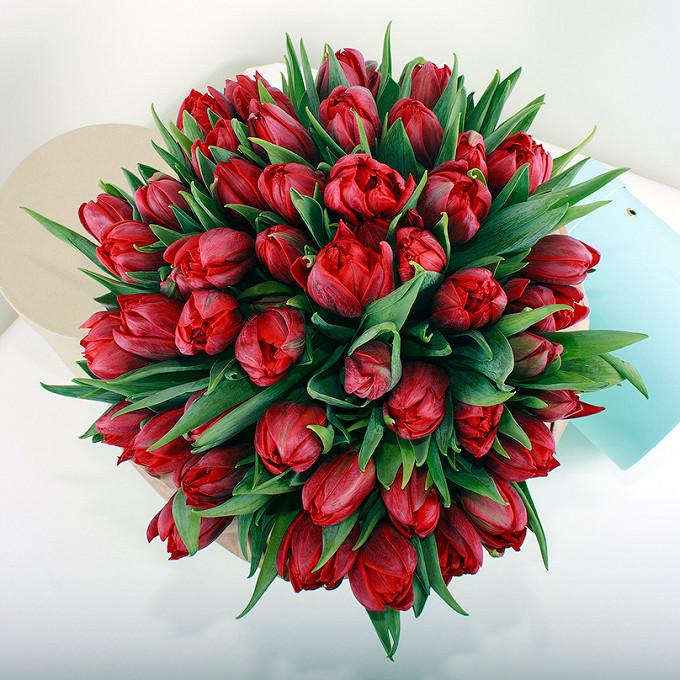 Тюльпан пионовидный (красный) — 7 шт.