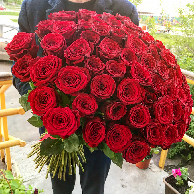 Роза Кения (бордовый, 60 см) — 75 шт., Лента атласная — 1 шт.