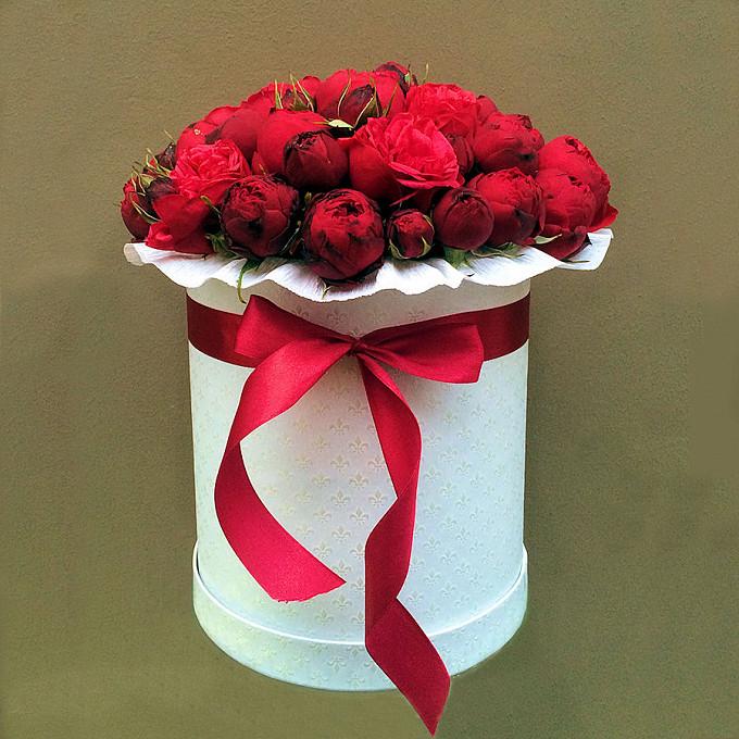 Роза кустовая пионовидная (бордовый) — 25 шт., Коробка (круг, средний) — 1 шт., Красная лента — 1 шт., Упаковка Фетр малый — 1 шт., Оазис — 2 шт.