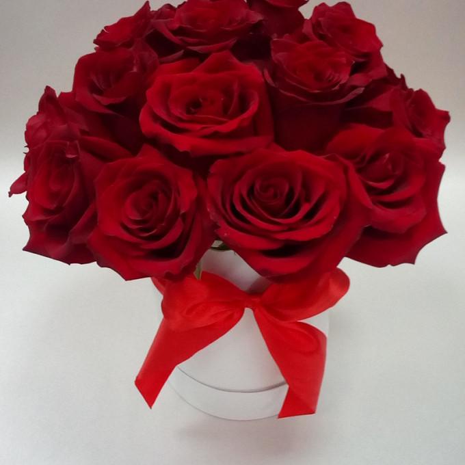 Роза Кения (бордовый) — 19 шт., Шляпная коробка (средний) — 1 шт., Оазис — 1 шт., Красная лента — 2 шт.