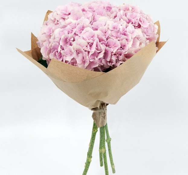 Гортензия (нежно-розовый) — 5 шт., Упаковка Крафт-бумага — 1 шт., Лента — 1 шт.