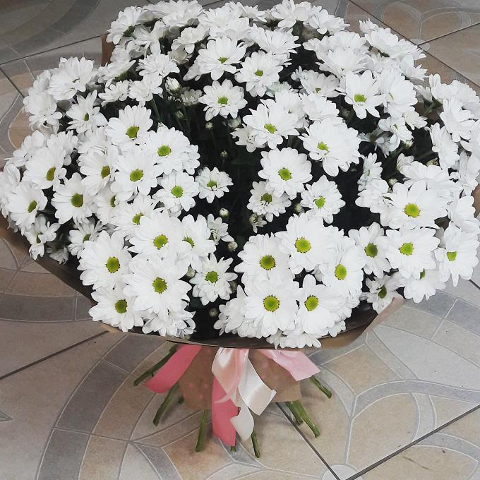 Хризантема кустовая (белый) — 15 шт., Лента атласная — 3 шт., Упаковка Крафт-бумага — 1 шт.