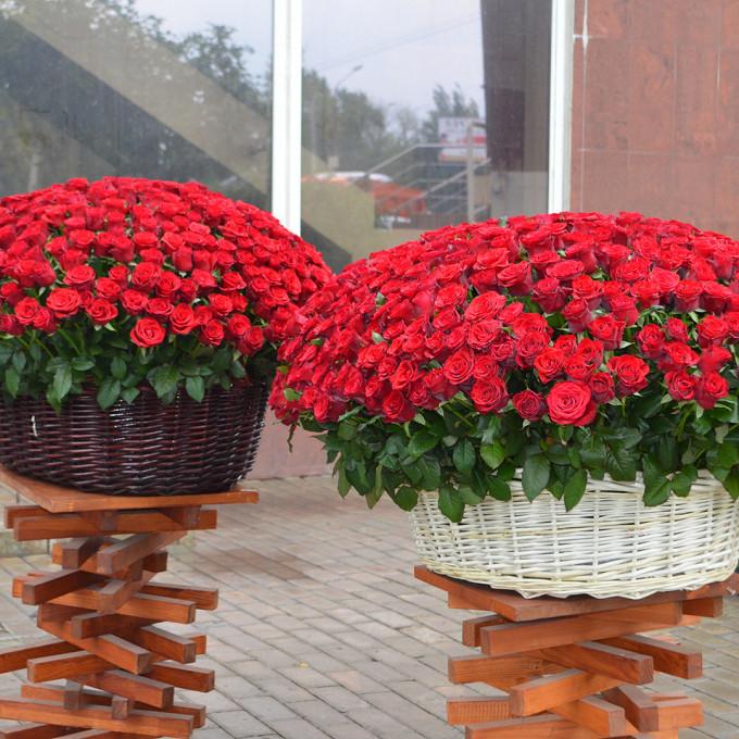 Роза Кения (красный) — 700 шт., Корзина для 500 роз (круг, большой) — 1 шт., Корзина для 300 роз (круг, большой) — 1 шт., Пиафлор — 30 шт.