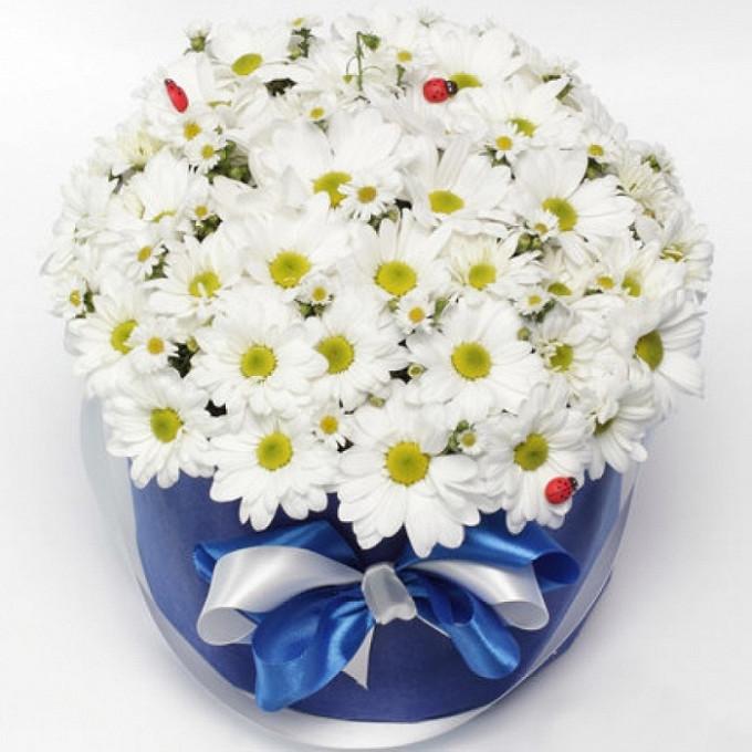 Хризантема кустовая (белый) — 15 шт., Шляпная коробка (средний) — 1 шт., Пиафлор — 2 шт., Божья коровка — 3 шт.