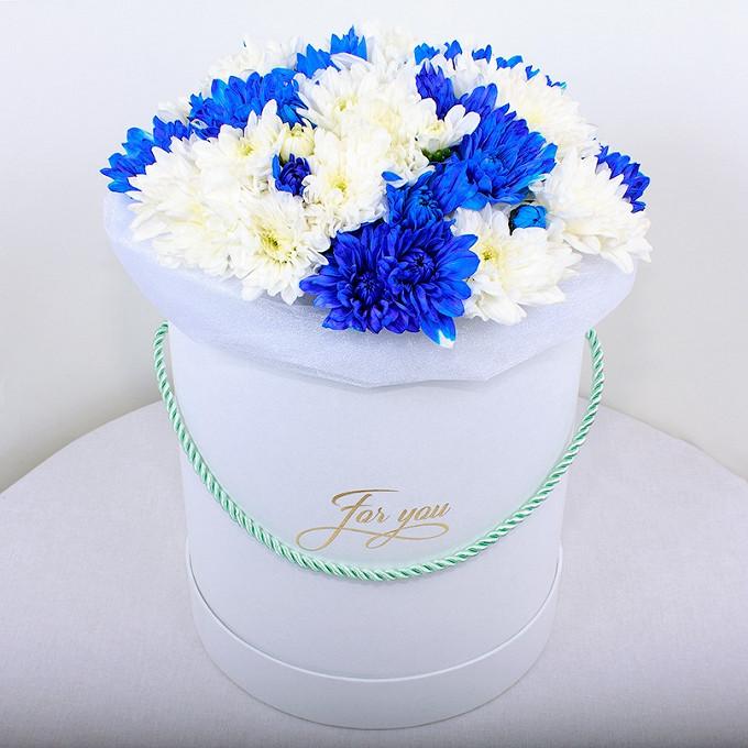15 сине-белых хризантем в круглой коробке