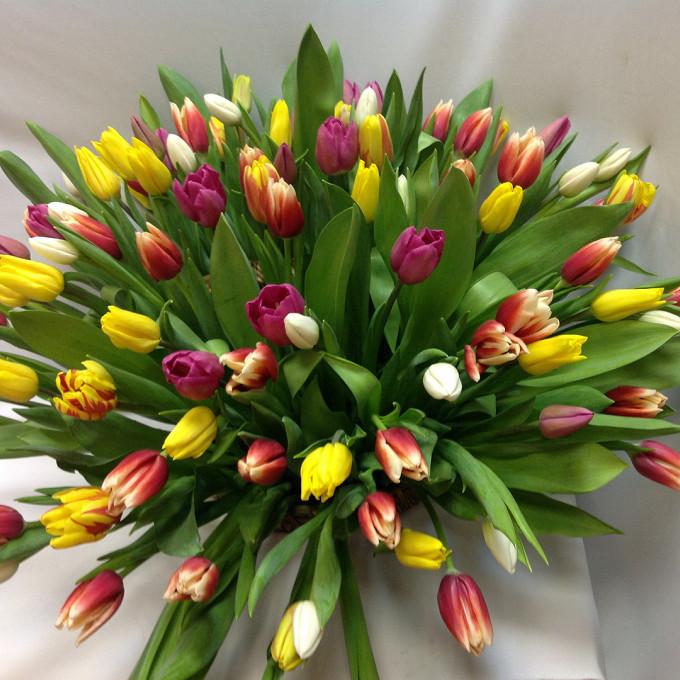 Тюльпан (микс (разных цветов)) — 51 шт., Пиафлор — 2 шт., Корзина (круг, большой) — 1 шт.