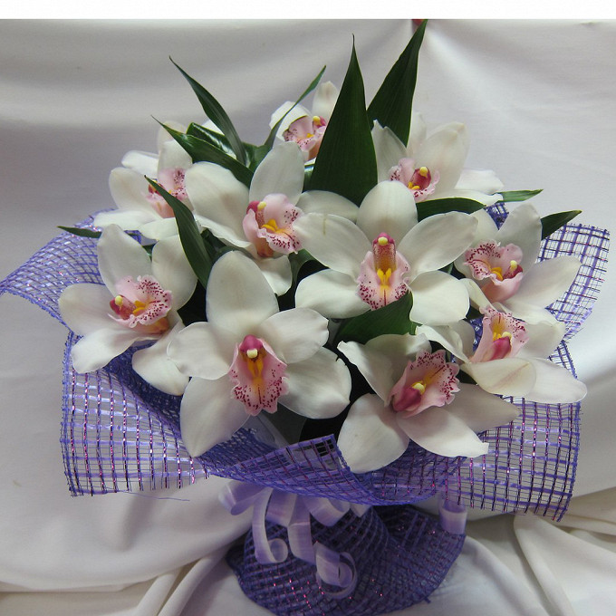 Орхидея Цимбидиум 1 бутон (белый) — 11 шт., Аспидистра — 7 шт., Упаковка Сетка — 1 шт., Лента — 1 шт.