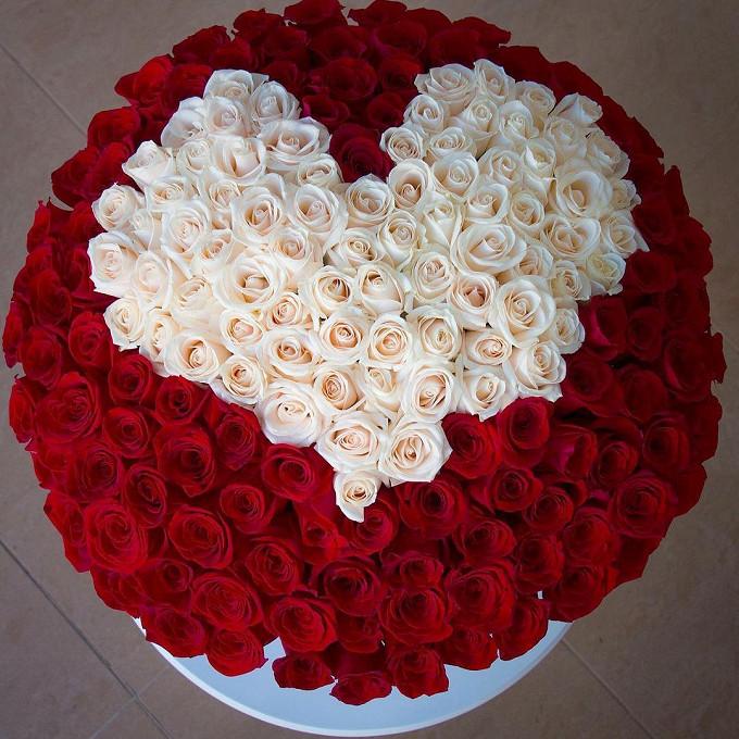 Роза Кения (красный) — 150 шт., Роза Кения (белый) — 51 шт., Шляпная коробка (большой) — 1 шт.