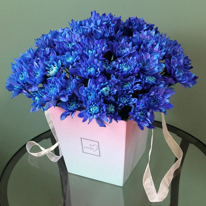 Хризантема кустовая (синий) — 13 шт., Пиафлор — 1 шт., Шляпная коробка (большой) — 1 шт.