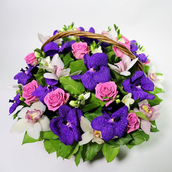 Роза Эквадор (нежно-розовый) — 11 шт., Салал — 15 шт., Орхидея Ванда 1 бутон (фиолетовый) — 15 шт., Орхидея Цимбидиум 1 бутон (белый) — 11 шт., Фрезия (белый) …