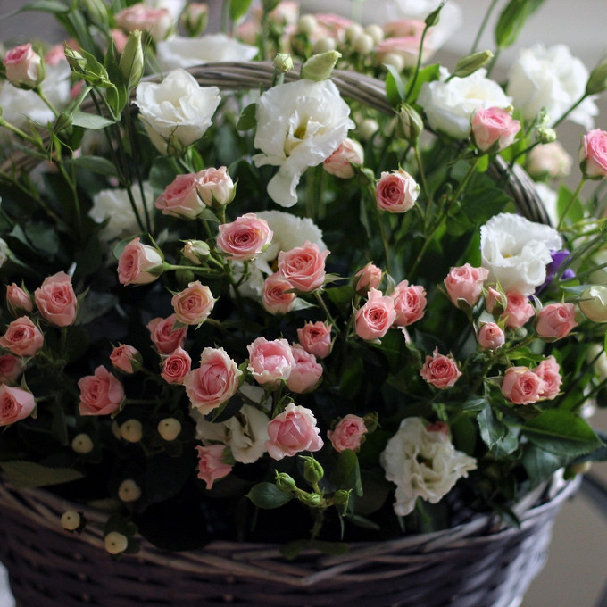 Гиперикум (нежно-розовый) — 3 шт., Роза кустовая (нежно-розовый) — 5 шт., Эустома (белый) — 4 шт., Пиафлор — 1 шт., Корзина (круг, средний) — 1 шт.