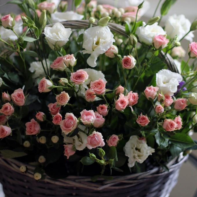 Гиперикум (нежно-розовый) — 3 шт., Пиафлор — 1 шт., Корзина (круг, средний) — 1 шт., Роза кустовая (нежно-розовый) — 5 шт., Эустома (белый) — 4 шт.