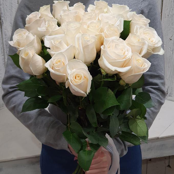 Роза Эквадор (белый, 40 см) — 25 шт., Белая лента — 1 шт.