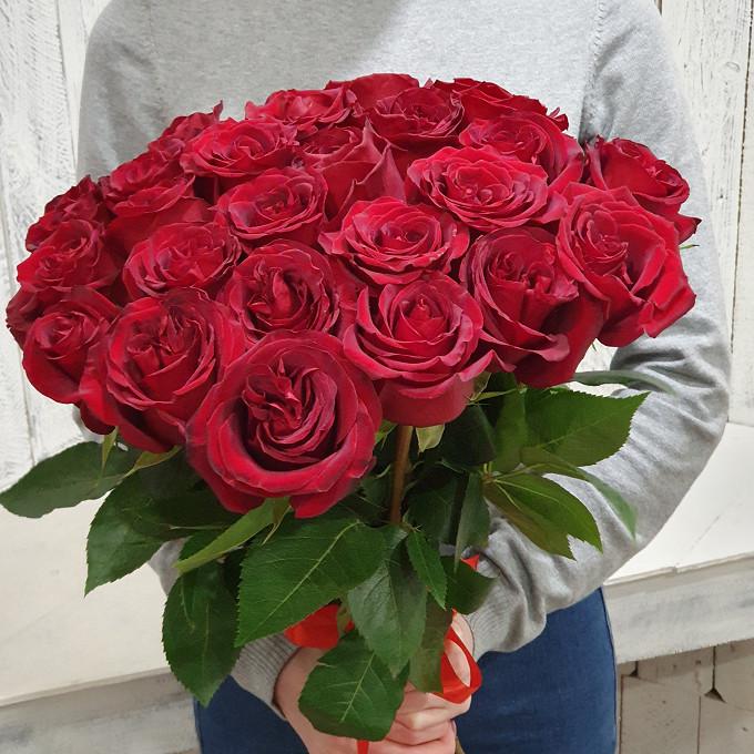 Роза Эквадор (красный, 40 см) — 25 шт., Красная лента — 1 шт.