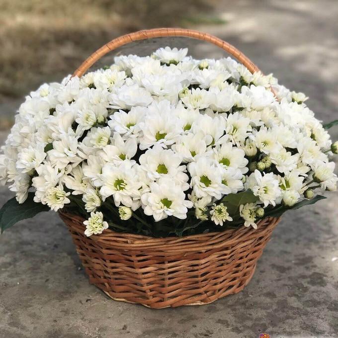 Корзина белых хризантем