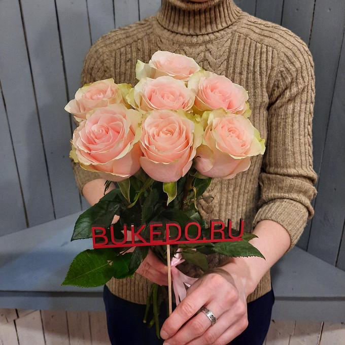 Нежно-розовые розы Эквадор, 50 см