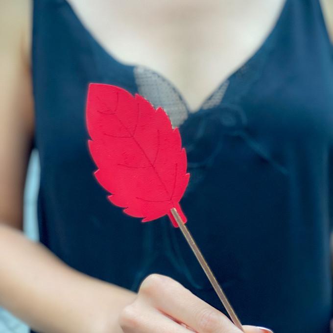 Лист красный